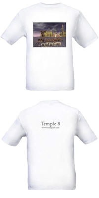 temple 8 cover art t-shirt
